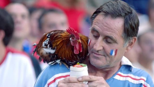 Französischer Fan füttert seinen Hahn