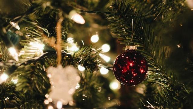 Eine rote Weihnachtskugel am Tannenbaum