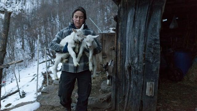 Katharina trägt zwei Ziegen einen Weg hinunter.