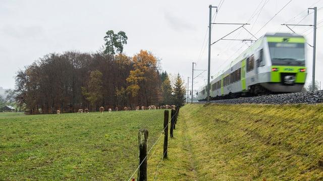 Ein Zug fährt über das Land.