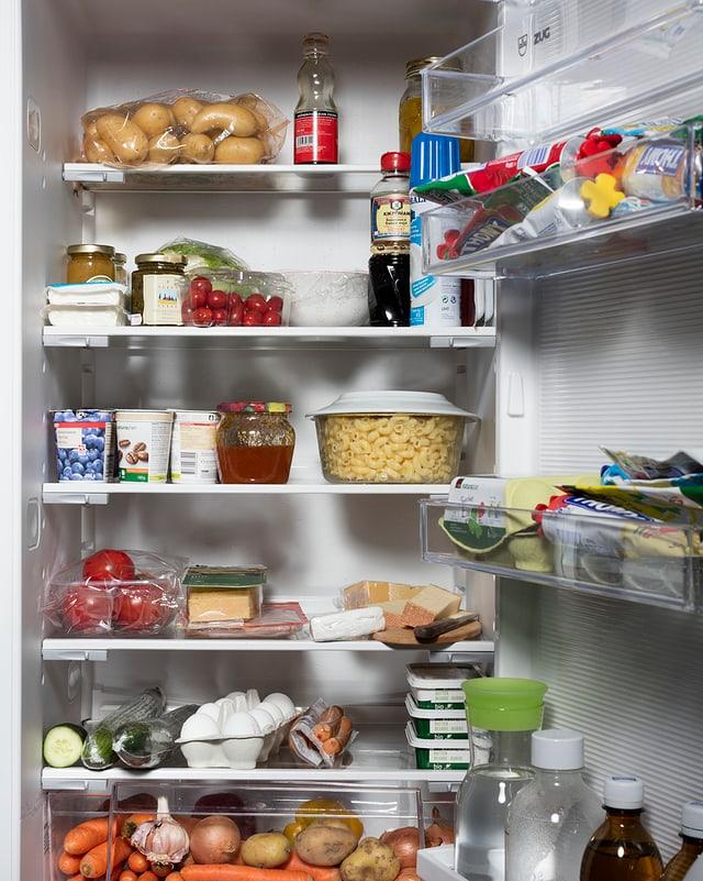 Auch in deinem Kühlschrank dürften sich einige Insekten verstecken.