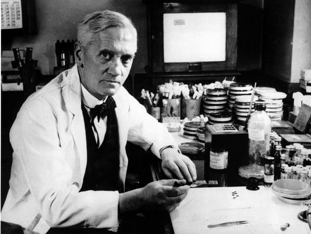 Porträt von Alexander Fleming, dem Erfinder von Penizillin in seinem Labor.