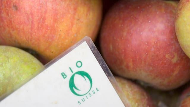 Äpfel und das Logo von Bio Suisse mit der grünen Knospe
