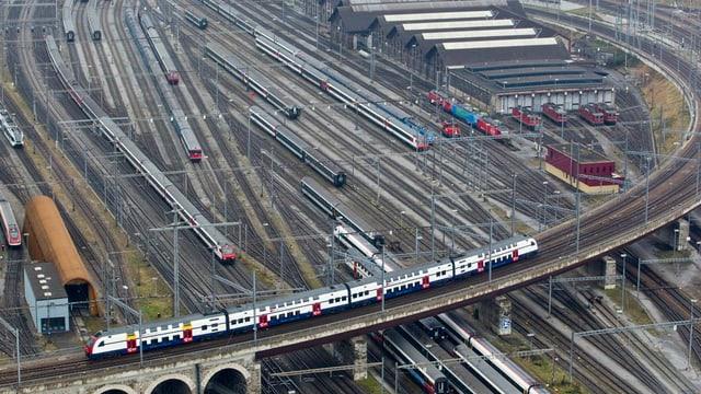 binaris tren