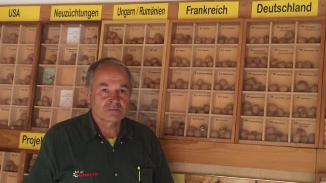 Heinrich Gubler vor seinem Nuss-Archiv mit 300 Walnuss-Sorten aus der ganzen Welt.