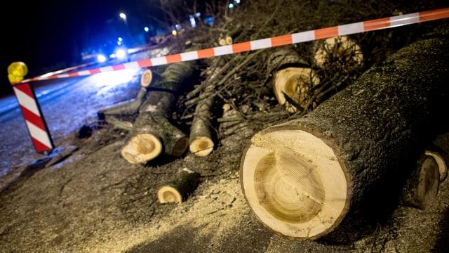 Von der Feuerwehr zersägte Bäume in Norddeutschland.