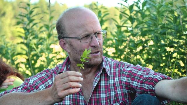 Ein Mann mit Brille im Grünen hält einen Vortrag über eine Pflanze, die er in der Hand hält.