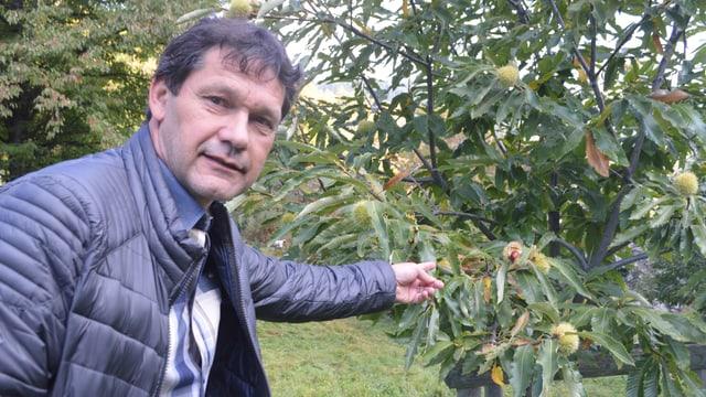 Zunftmeister Alban Albrecht neben einem Baum.