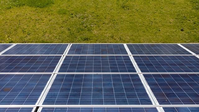 Solarpanel neben eine Wiese
