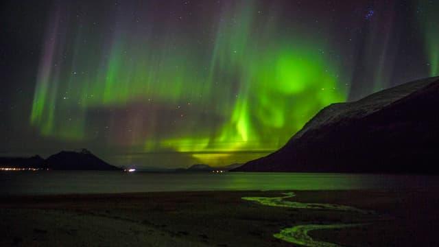 Grüne Streifen am Nachthimmel über dem Meer.
