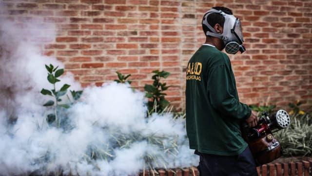 Mann mit Gasmaske verteilt rauchendes Insektizid in Pflanzen, im Hintergrund eine Backsteinmauer.