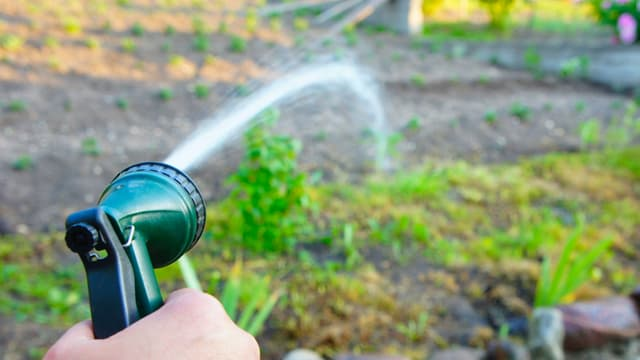 Mit einem Spritzaufsatz giesst eine Person ihren Garten.