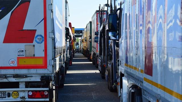 Lange Reihe von Lastwagen vor dem Grenzübergang.