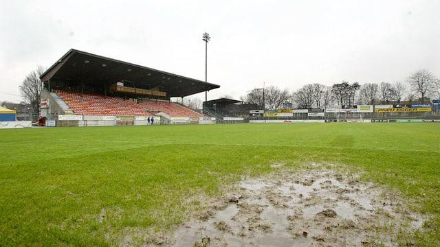Rasen und Tribüne des Stadion Brügglifeld.