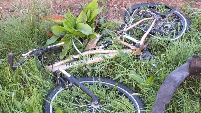 Kaputtes Velo liegt im Gras.
