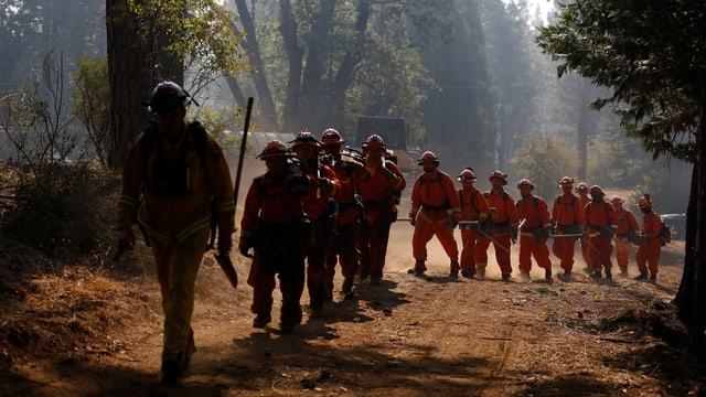 Häftlinge in Feuerwehrausrüstung 2014