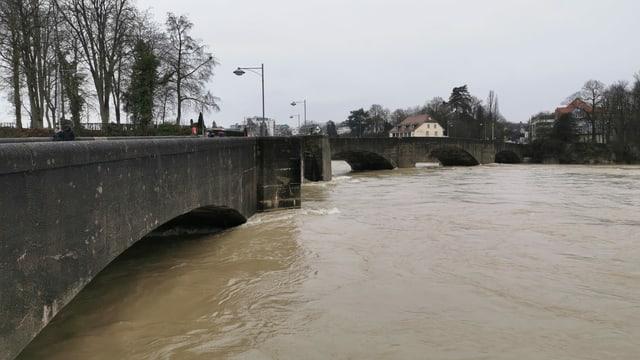 Der Rhein hatte Ende Januar Hochwasser