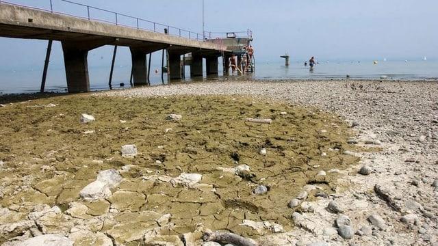 Trockenheit Bodensee im Jahr 2003