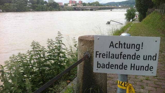 Schild mit der Aufschrift: Achtung! Freilaufende und badende Hunde am Rheinufer