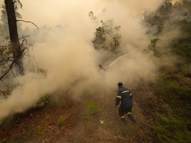 Feuerwehrmänner stehen mit einem Schlauch in Rauchschwaden und spritzen Wasser.