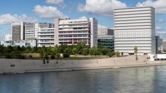 Rheinuferweg für Fussgänger und Velofahrer.