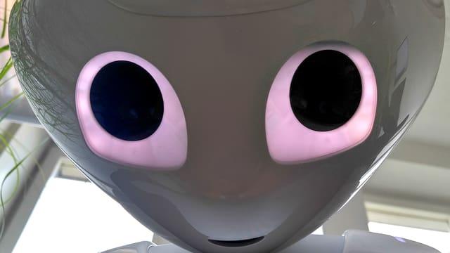 Das Gesicht von «Pepper». E.T.-like.