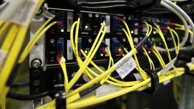 Aufnahme mehrerer gelber Breitbandkabel.