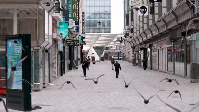 Spaziergänger im menschenleeren Brüssel