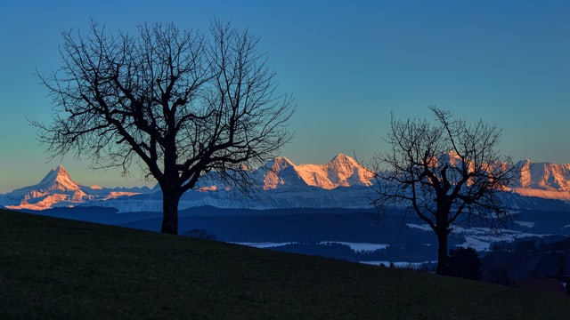 Am 26. Februar war es bis am Abend oft wolkenlos, wie hier in Deisswil.