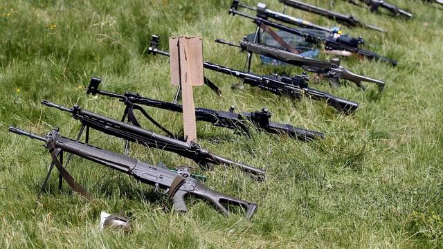 Gewehre liegen für die Kontrolle auf einer Wiese bereit.