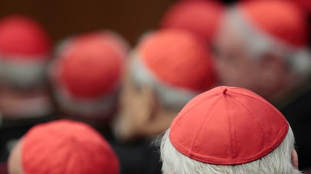 Blick von hinten über die Köpfe von versammelten Bischöfen.
