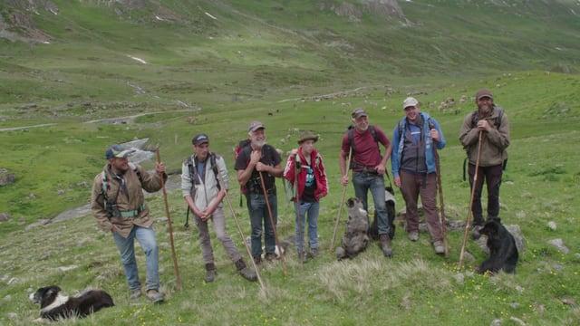 Ina gruppa da pasters che mainan las vatgas sur il Cuolmen d'Fenga.