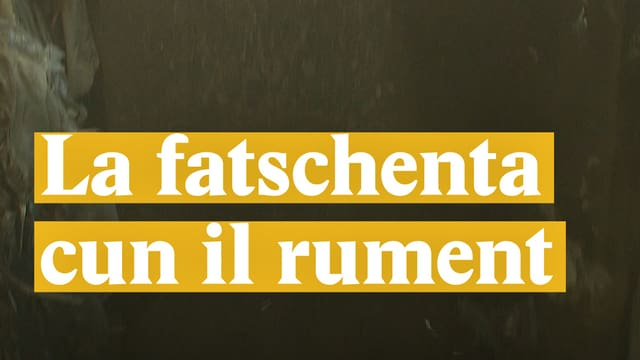 Laschar ir video «La fatschenta cun il rument»