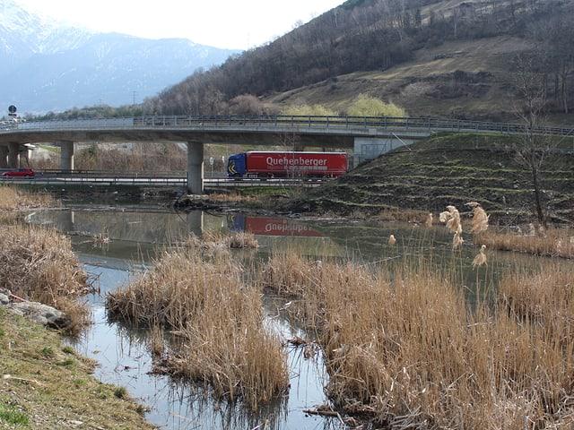 Das Biotop mit der Autobahnbrücke im Hintergrund.