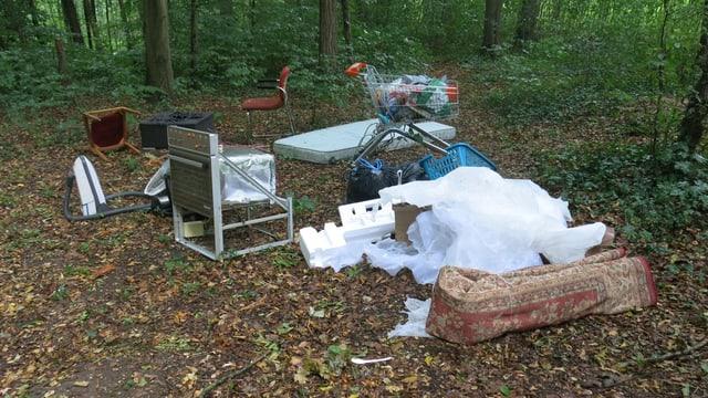 Teppiche, Stühle, Matratzen - im Birsfelder Hardwald wird allerlei Abfall illegal entsorgt.