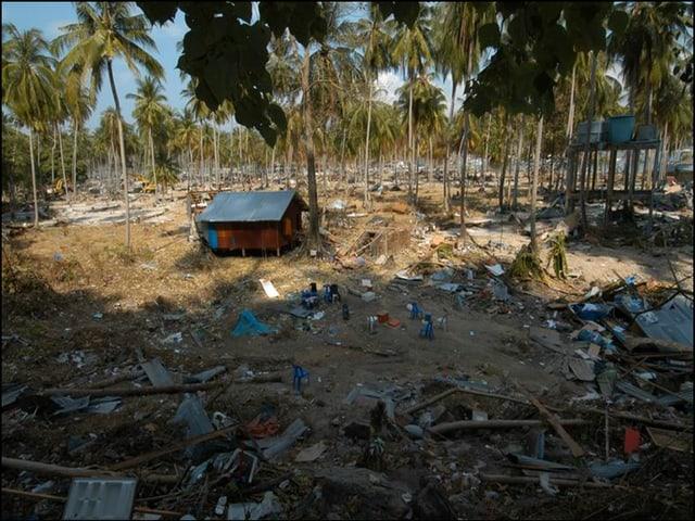 Verwüstete Häuser durch die Tsunami Katastrophe