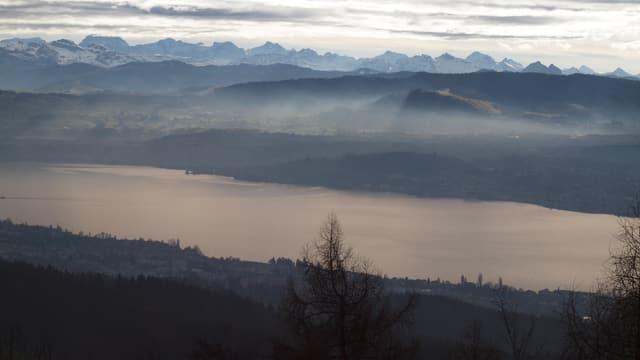 Blick vom Pfannenstiel auf den Zürichsee, dahinter die Alpen, mehr oder weniger aper.