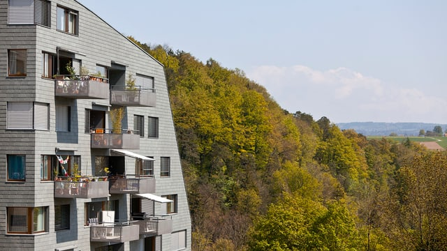Links ein grauer Wohnblock, rechts dahinter grüner Wald.