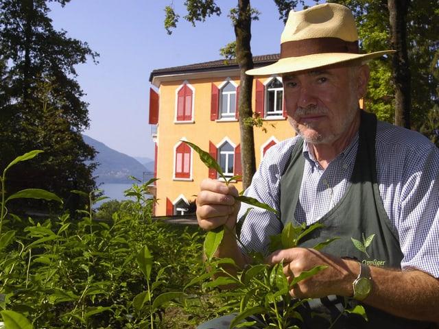 Peter Oppliger auf der Teeplantage.
