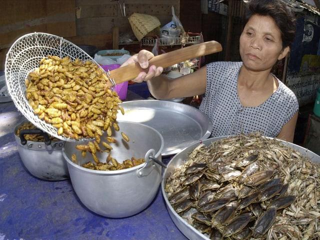 Zubereitung von Seidenwürmern, Heuschrecken und weiteren Tieren in einem Restaurant in Bangkok.