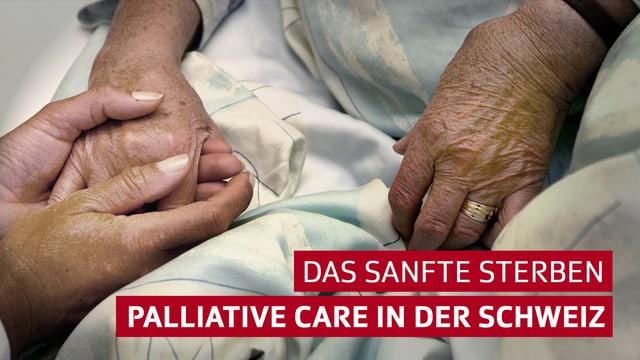 Hände halten sich mit Titel Palliative Care