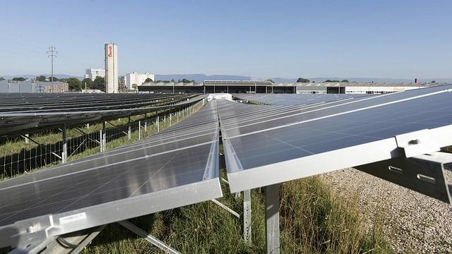 Der Solarpark La Boverie in Payerne.