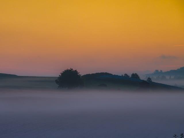 Unten Nebel, dahinter Hügel und Bäume und der Himmel ist in der Dämmerung gelb bis orange.