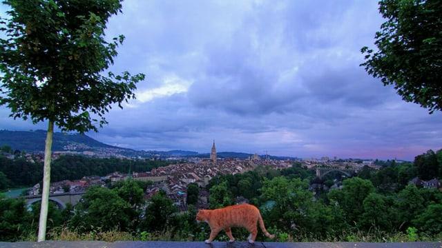 Schon am frühen Morgen waren die Wolken über Bern bedrohlich.