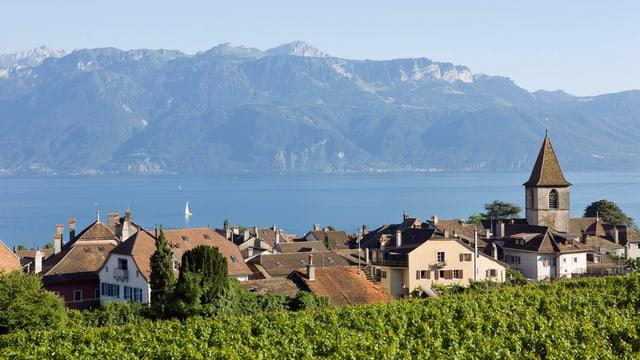 Eine Waadtländer Gemeinde im Lavaux am Genfersee.