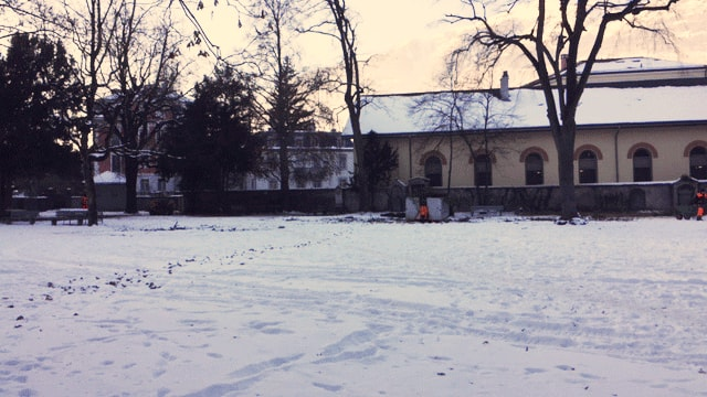 Il Stadtgarten a Cuira vegn restaurà.