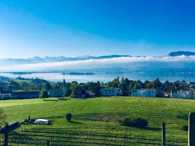 Zürichsee im Frühlingskleid mit wenigen Wolken am Himmel.