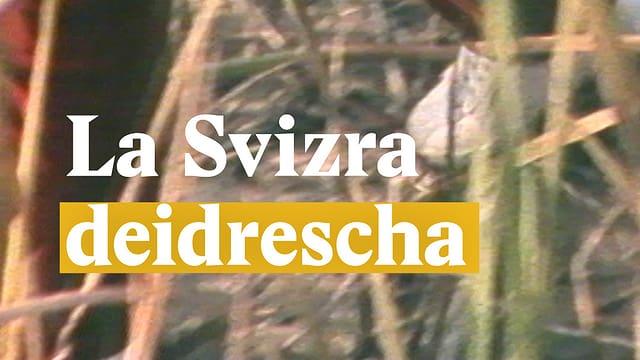 Laschar ir video «La Svizra deidrescha»