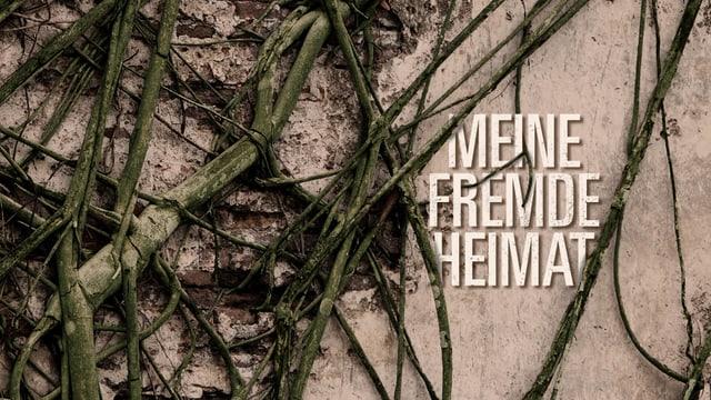 Sendungslogo  «Meine fremde Heimat»