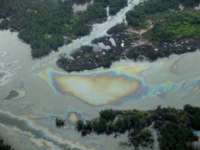 Ölteppich im Nigerdelta.